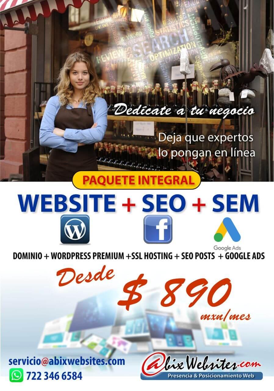 Abix Websites Paquete Website + SEO + SEM promo